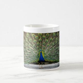 Caneca De Café design do pavão