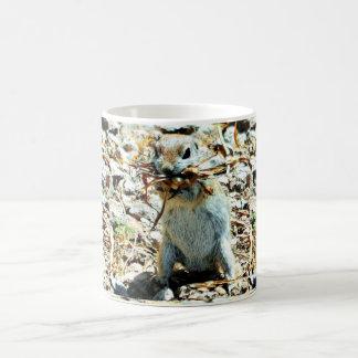 Caneca de café do esquilo à terra do aninhamento