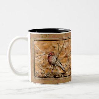 Caneca de café do passarinho roxo