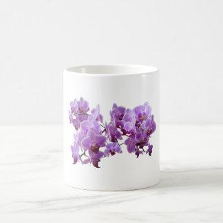 Caneca De Café domestica do orchidea