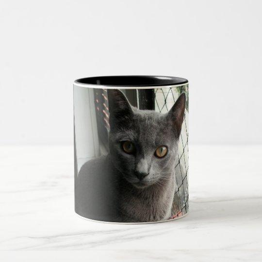 Caneca De Café Em Dois Tons Blue kitty mug