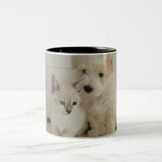 Caneca De Café Em Dois Tons Cão e taça de gato