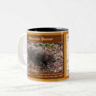 Caneca De Café Em Dois Tons Castor de montanha, um roedor psto em perigo, seus