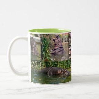 Caneca De Café Em Dois Tons Colagem da foto do hipopótamo,