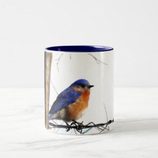 Caneca De Café Em Dois Tons Foto oriental do Bluebird