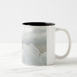 Caneca De Café Em Dois Tons Memórias do inverno