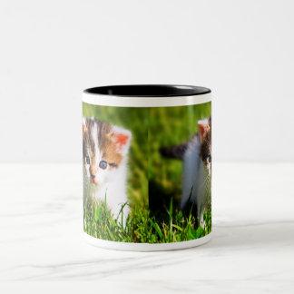 Caneca De Café Em Dois Tons O gato selvagem