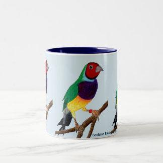 Caneca De Café Em Dois Tons ~ original da arte do ~ do passarinho de Gouldian