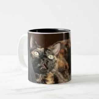 Caneca De Café Em Dois Tons Tortitude mug - tortoiseshell cat