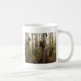 Caneca De Café Epiphyte Bromeliad na floresta de Florida