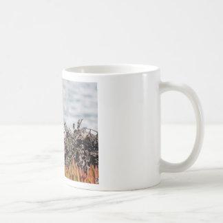 Caneca De Café Esquilo pequeno