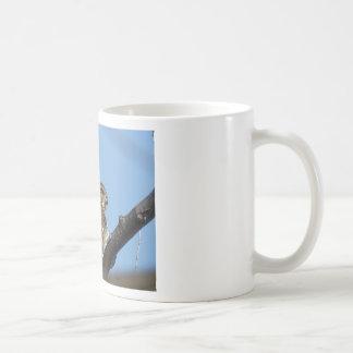 Caneca De Café falcão