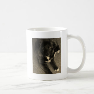 Caneca De Café Filhote de cachorro de border collie