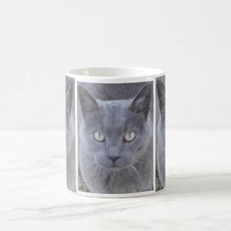 Caneca De Café Fim-acima cinzento da cara do gato