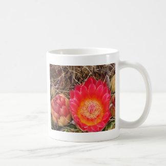 Caneca De Café Flor cor-de-rosa do cacto de tambor da arizona de