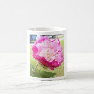 Caneca De Café flor variável do rosa e a branca do hibiscus