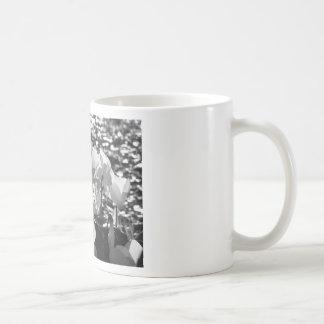 Caneca De Café Flores brancas do cyclamen de Backlits no fundo