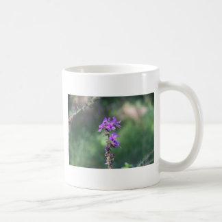 Caneca De Café flower_purple.JPG