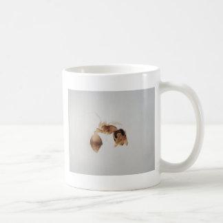 Caneca De Café Foto do microscópio de uma formiga