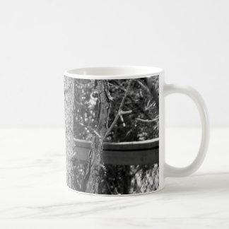 Caneca De Café Foto preto e branco da natureza da árvore