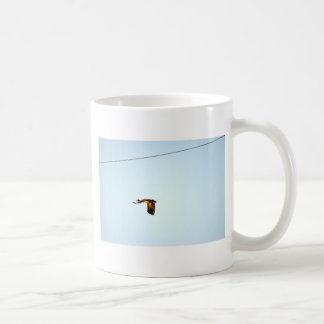 CANECA DE CAFÉ GANSO QUEENSLAND RURAL AUSTRÁLIA DO MAGPIE