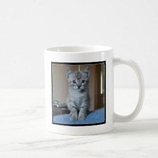 Caneca De Café Gatinho cinzento do gato malhado