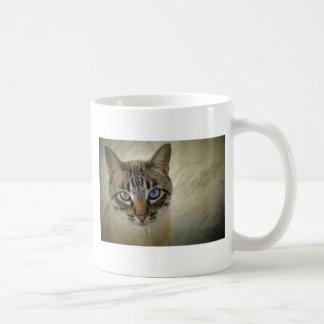 Caneca De Café gato