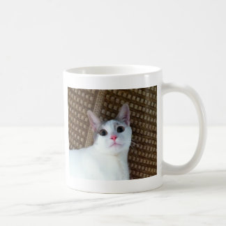 Caneca De Café Gato branco surpreendido