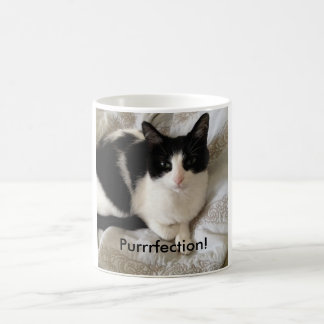 "Caneca De Café Gato sofisticado do café-bebendo: ""Purrrfection! """