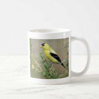 Caneca De Café Goldfinch
