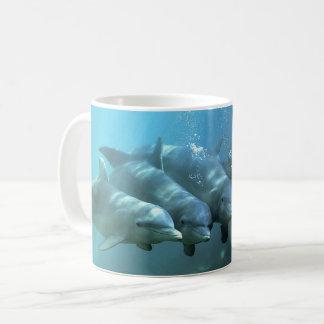 Caneca De Café Golfinhos curiosos