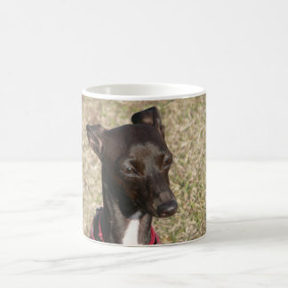 Caneca De Café greyhound.png italiano
