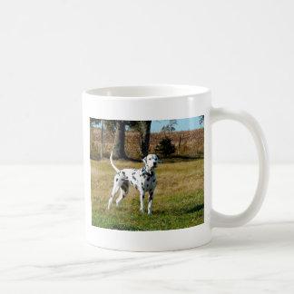 Caneca De Café Kevin o Dalmatian