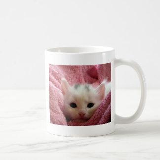Caneca De Café kitten-cat-fluffy-cat-cute-62321
