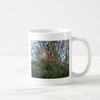 Caneca De Café Leão de montanha na vigia