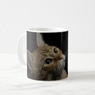 Caneca De Café Loki o gato da câmera