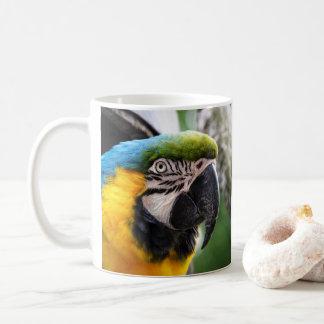 Caneca De Café Macaw azul e amarelo