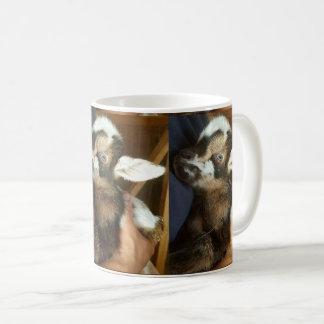 Caneca De Café Miúdo nigeriano bonito da cabra do anão