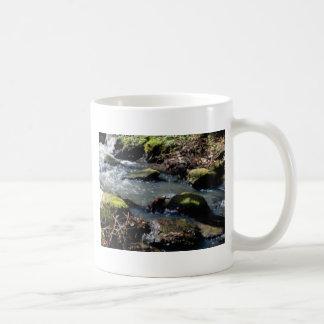 Caneca De Café musgo em The Creek