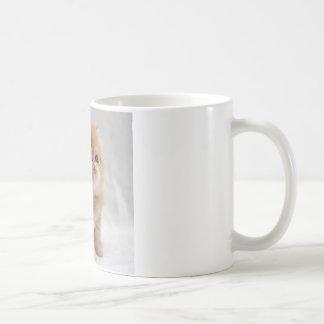 Caneca De Café Não mim! Gatinho persa alaranjado resoluto