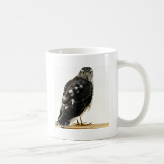 Caneca De Café O falcão