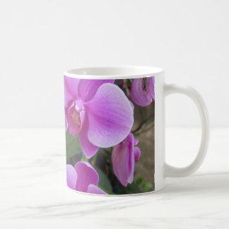 Caneca De Café Orquídeas