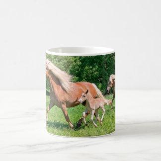 Caneca De Café Os cavalos de Haflinger com potros bonitos