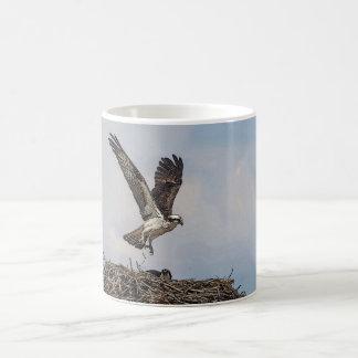 Caneca De Café Osprey em um ninho
