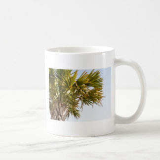 Caneca De Café Palmeira da costa leste Myrtle Beach famoso