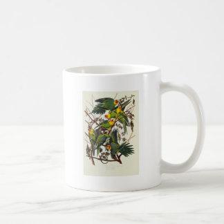 Caneca De Café Papagaio de Carolina - John James Audubon