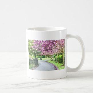 Caneca De Café Parque bonito durante o primavera