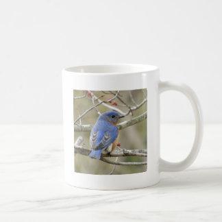 Caneca De Café Parte traseira do Bluebird