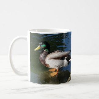 Caneca De Café Pato do pato selvagem