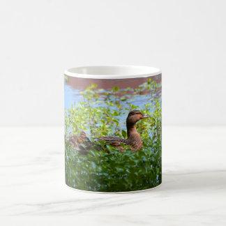 Caneca De Café Pato selvagem e Patinho-Natação por Shirley Taylor